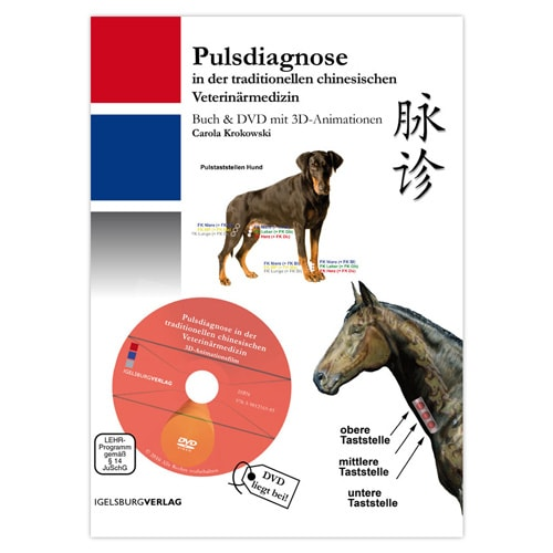 https://www.praxisdienst.nl/out/pictures/generated/product/1/800_800_100/igelsburg_verlag_pulsdiagnose_191169.jpg
