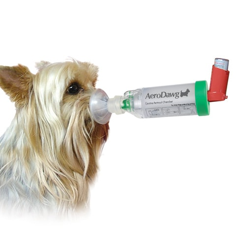 https://www.praxisdienst.nl/out/pictures/generated/product/1/800_800_100/inhalator_fuer_hunde_aerodawg_trudell_191402_2.jpg