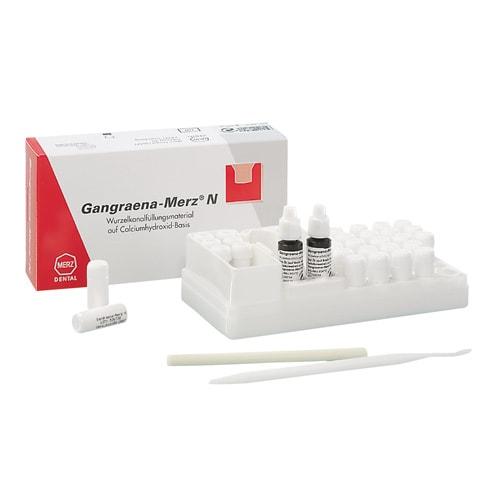 https://www.praxisdienst.nl/out/pictures/generated/product/1/800_800_100/merz_dental_gangraena_merz_n_220613_1(1).jpg