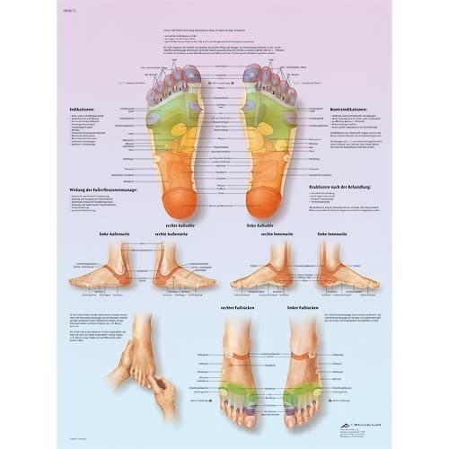 """Anatomische Wandplaat """"Voetreflex Massage"""""""