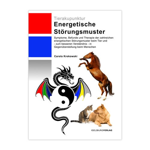 Buch «Energetische Störungsmuster»