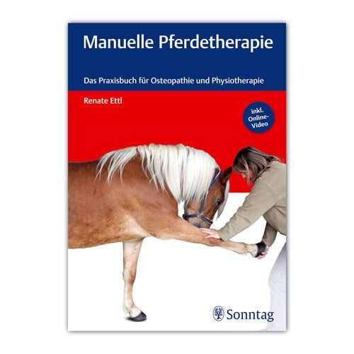 https://www.praxisdienst.nl/out/pictures/generated/product/1/800_800_100/menuelle_pferdetherapie_191031.jpg