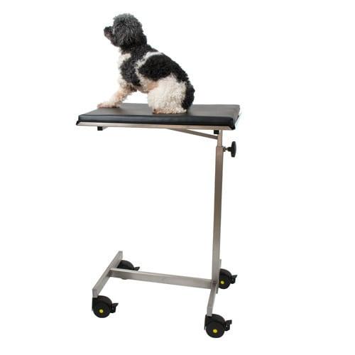 Operatietafel voor kleine dieren