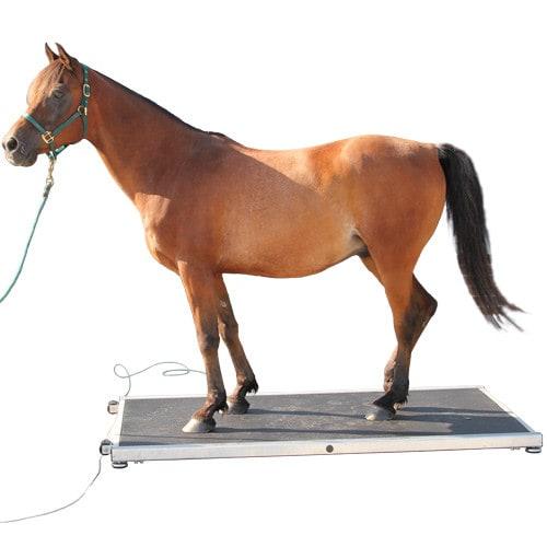 Mobiele paardenweegschaal